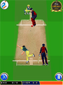 Professional Cricket 2014 preview
