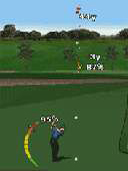 Tiger Woods PGA 2009 preview